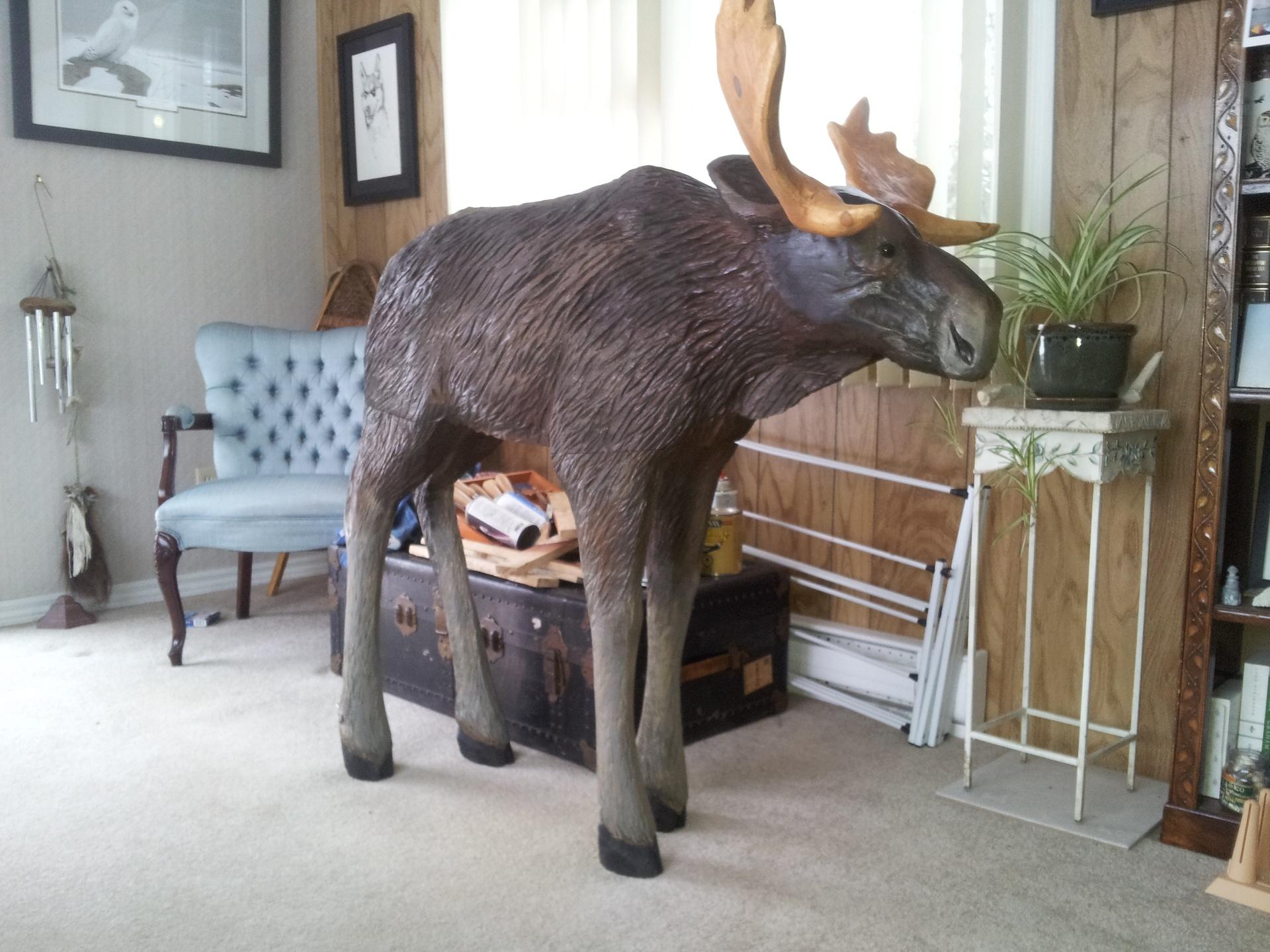 Moose - Realistic